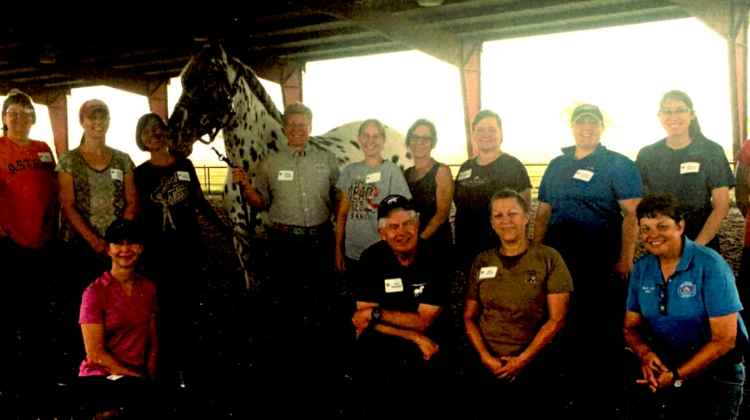Masterson Method Beyond Horse Massage Weekend Seminar - Beasley TX